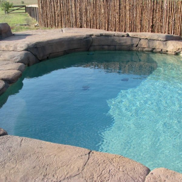 Flat textured artificial rock surrounding a pool in place of regular concrete. located in Gainesville Texas.
