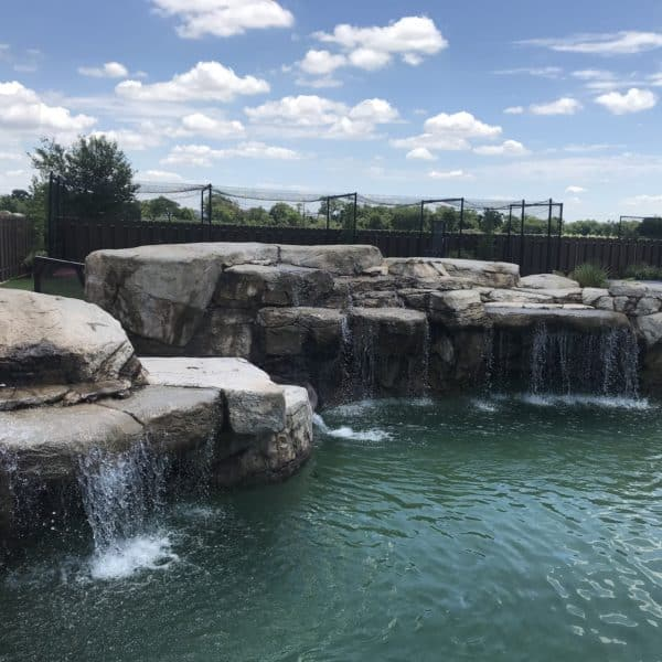 A water feature that has multiple waterfalls that falls into a swimming pool. Gainesville Texas.